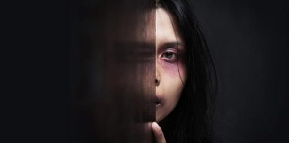 Domestic Violence Initiative